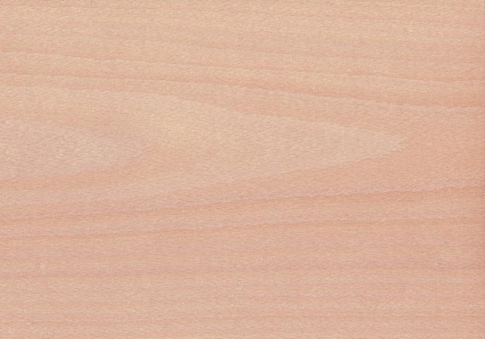 Fornir bukowy 1,5 mm
